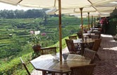 Restaurant di Telaga Waja