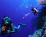 watersport_diving_150